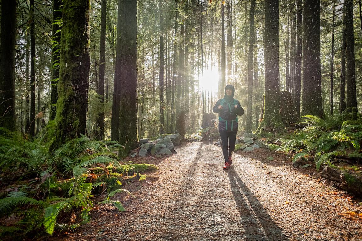 Jeune femme en randonnée pédestre dans une forêt boréale