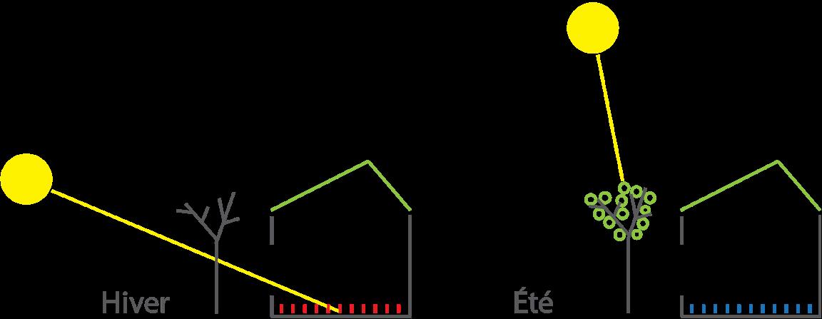 Illustration du principe du design solaire passif démontrant l'angle des rayons du soleil en hiver et en été et l'impact sur le projet La Mésange du côté sud