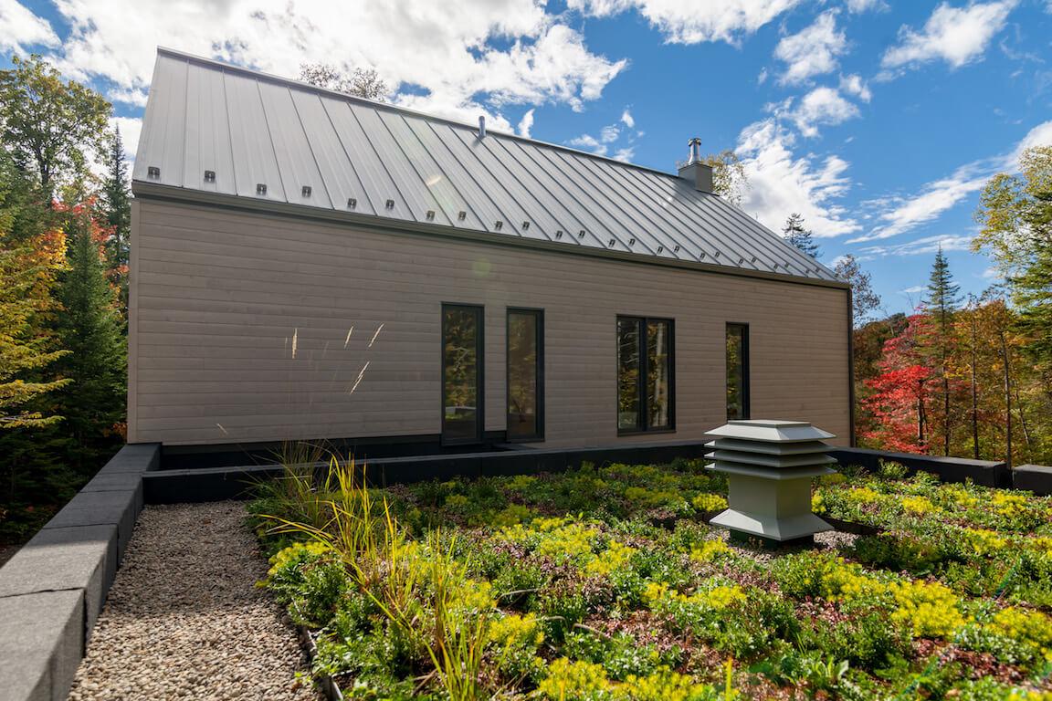Vue du toit vert au-dessus du garage, projet Le Colibri réalisé par Biophile